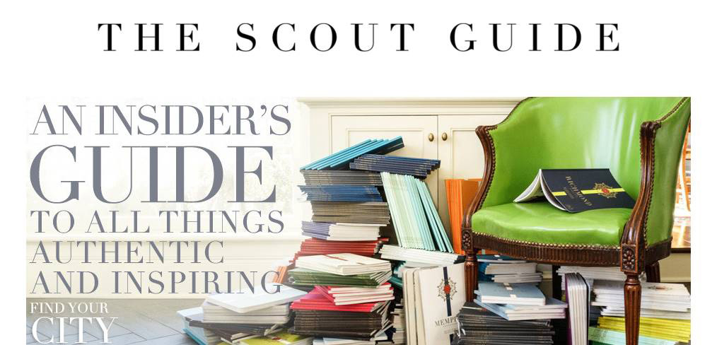Scout Guide First Edition, Summer 2015